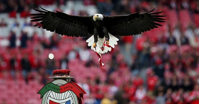El águila es el emblema del Benfica - Odio Eterno Al Fútbol Moderno